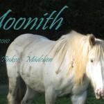 Moonith