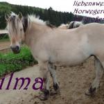 wilmai