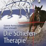 Die Schiefentherapie